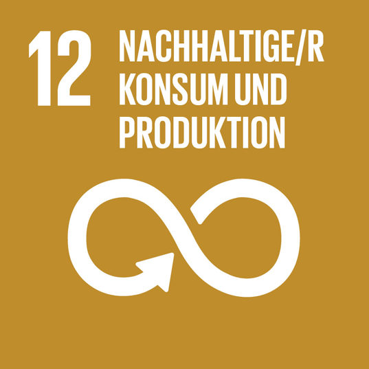 SDG no. 12 Responsible consumption and production