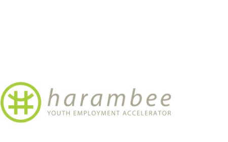 Harambee is a not-for-profit social enterprise with extensive experience building solutions and innovations that can solve the global youth unemployment challenge.